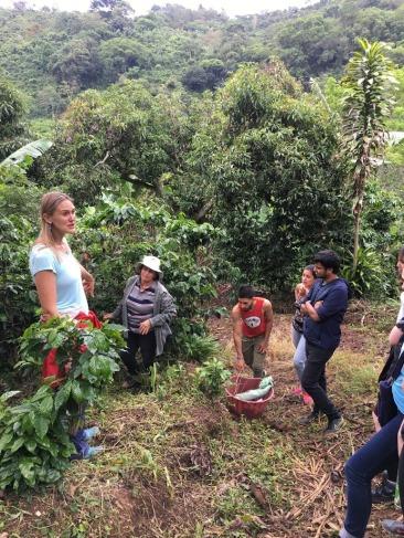 Coffee Farm_Bean Voyage